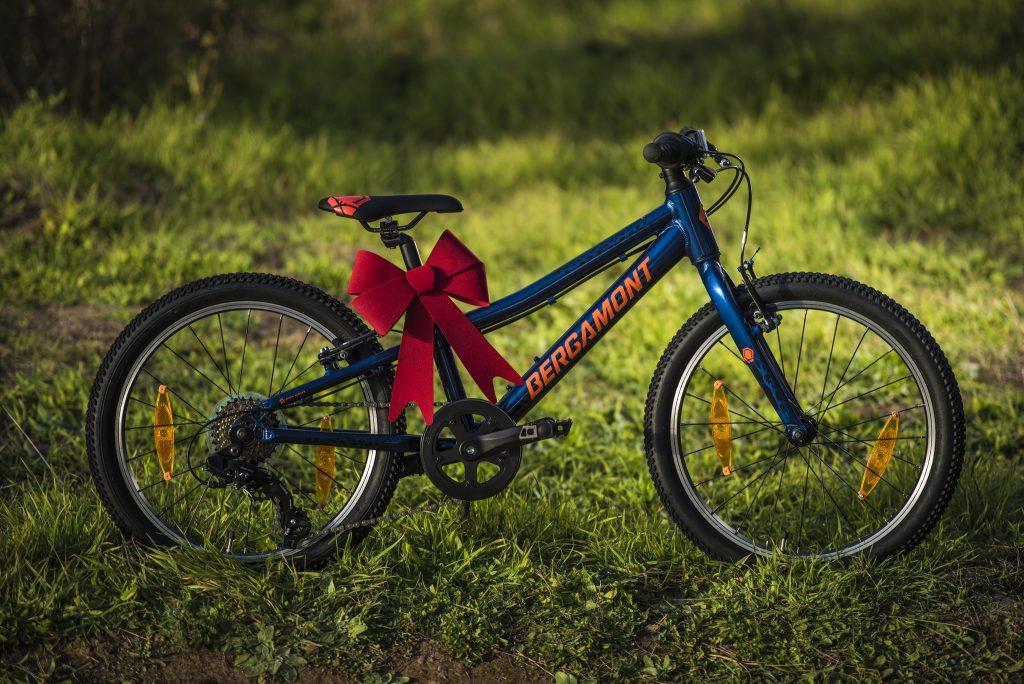 Bicicleta de 20 pulgadas de la marca BERGAMONT