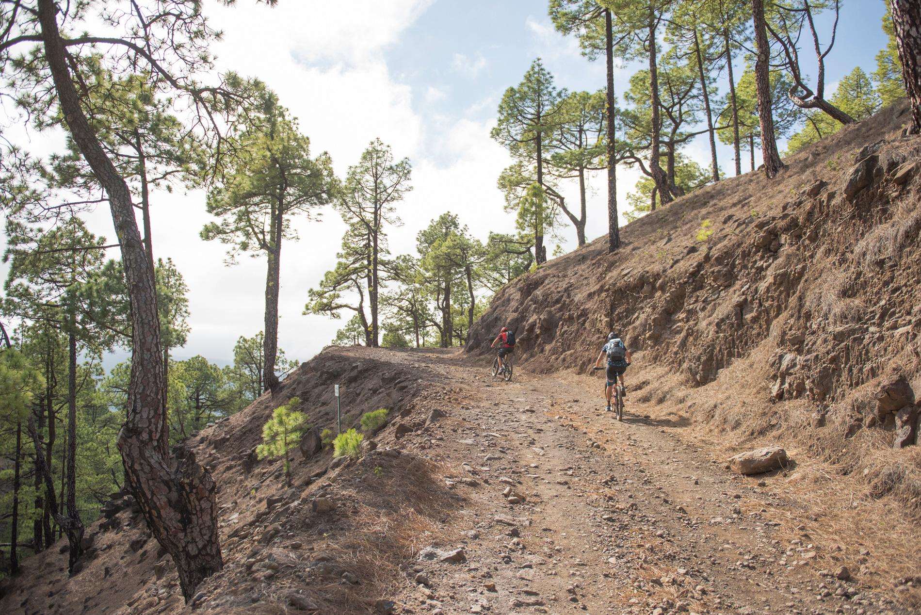 Uphill mit traumhafter Aussicht und durch duftende Kiefernwälder